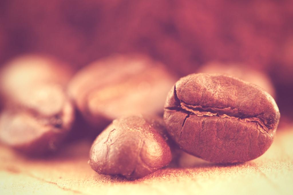 Close Up Coffee Bean