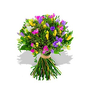 Freesias Only bouquet of flowers