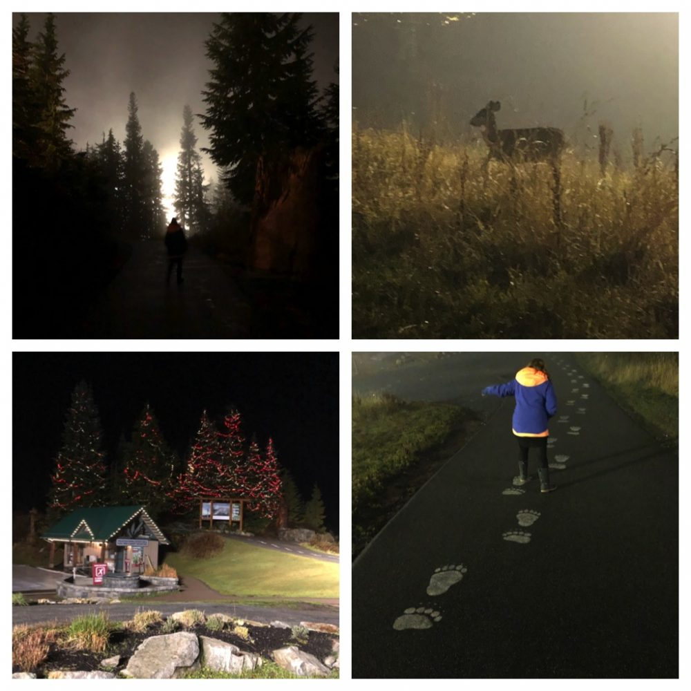 A collage of photos from top of Grouse Mountain